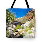 Oasis On Borrego Palm Canyon Trail In Anza-borrego Desert Sp-ca Tote Bag