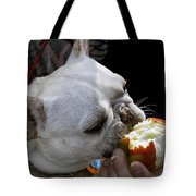 Oat Meal The French Bull Dog Tote Bag