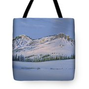 Observation Peak Tote Bag by Michele Myers