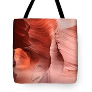 Observing The Pathway Tote Bag