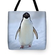 Observing Tote Bag