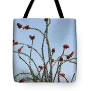 Ocatillo With Red Blossoms Tote Bag