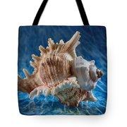 Ocean Breeze Tote Bag by Tom Druin