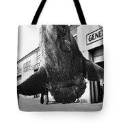 Ocean Sunfish Mola Mola  Monterey 1946 Tote Bag