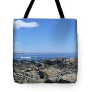 Ocean View Panoramic Tote Bag