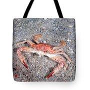 Ocellate Swimming Crab Tote Bag