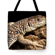 Ocellated Lizard Timon Lepidus Tote Bag