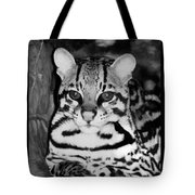 Ocelot In Repose Tote Bag