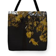 Ochre And Umber Tote Bag