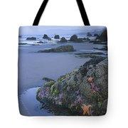 Ochre Sea Stars At Low Tide Miwok Beach Tote Bag