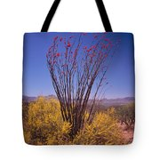 Ocotillo And Palo Verde Tote Bag