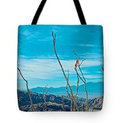 Ocotillo At Top Of Ladder Canyon With Salton Sea In Distance In Mecca Hills-ca Tote Bag
