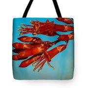 Ocotillo Flowers Tote Bag by Robert Bales