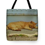 Ocracoke Cat 8/04 Tote Bag
