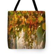 October Colors Tote Bag