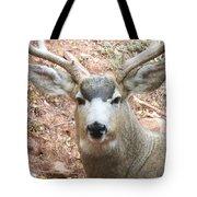 October Deer Tote Bag