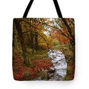 October In Oregon Tote Bag