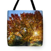 October Maple  Tote Bag