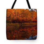 October Mirror Tote Bag