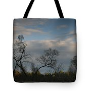 October River Reflections Tote Bag