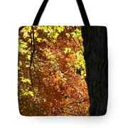 October Tree Tote Bag