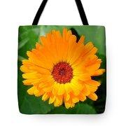 October's Summer Sunlit Marigold  Tote Bag