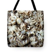 Octopuses Tote Bag