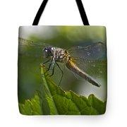 Odonata Tote Bag