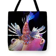 Of Danger And Grace Tote Bag