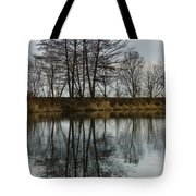 Of Mirrors And Trees Tote Bag