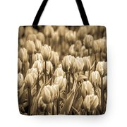 Of Tulips Past Tote Bag