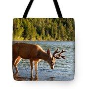 Oh Deer Is That Me Tote Bag