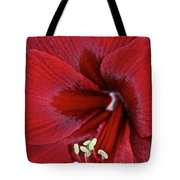Oh So Red Tote Bag
