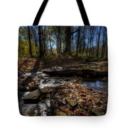 Ohio Fall Beauty Scene Tote Bag