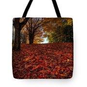 Ohio Fall Scenery Tote Bag