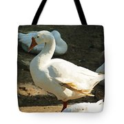 Oil Painting - A Duck Making A Pose Tote Bag