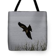 Oil Painting - A Large Bird Flying As Part Of The Birds Of Prey Show Tote Bag