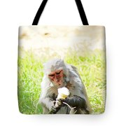 Oil Painting - A Monkey Eating An Ice Cream Tote Bag