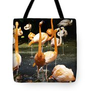 Oil Painting - A Number Of Flamingos With Their Heads Held High Inside The Jurong Bird Park Tote Bag