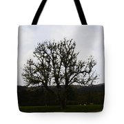 Oil Painting - An Old Tree In The Middle Of A Garden And Playground Tote Bag