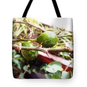 Oil Painting - Lemons Along With Pain Tote Bag