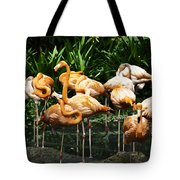 Oil Painting - Number Of Flamingos Inside The Jurong Bird Park Tote Bag
