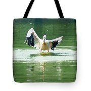 Oil Painting - Pelican Flapping Its Wings Tote Bag