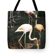 Oil Painting - The Head Of A Flamingo Under Water In The Jurong Bird Park In Singapore Tote Bag