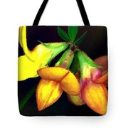Yellow And Orange Trefoil  Tote Bag