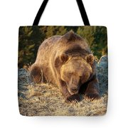 Ok -  It's Your Trail Tote Bag