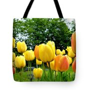Okanagan Valley Tulips Tote Bag