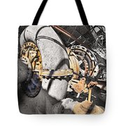 Old Abandoned Hydro Electric Powerhouse Tote Bag