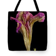 Old Age With Beauty Tote Bag