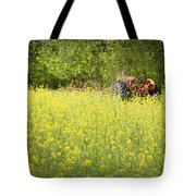 Old Allis Tote Bag